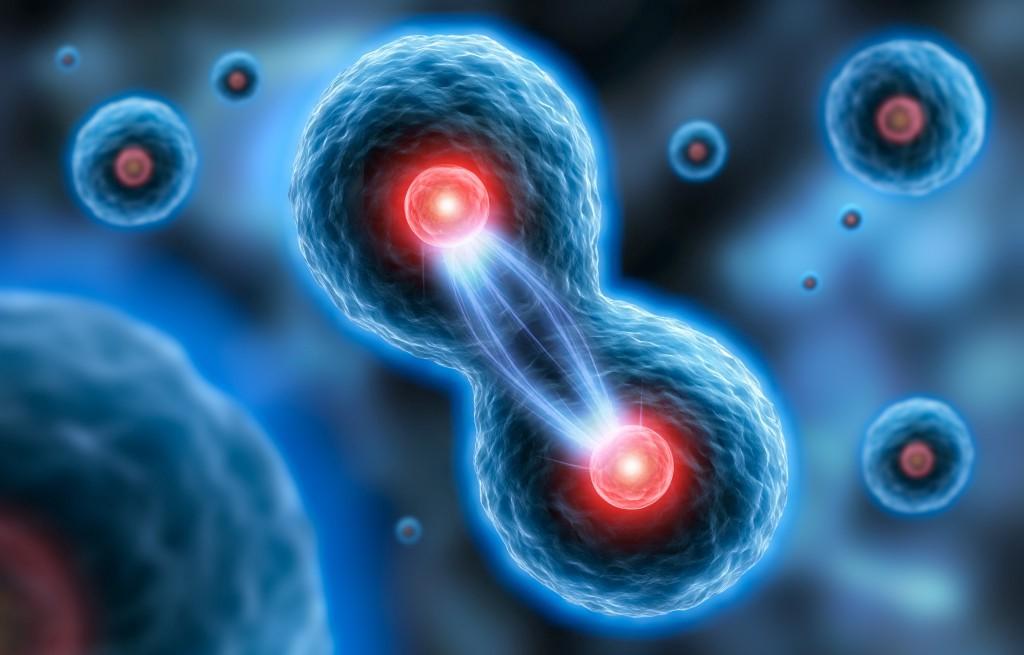Японские ученые нашли новый ген, влияющий на бесплодие